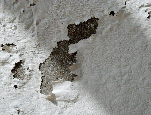 Tip Albañiles: ¿Como reparar las humedades?