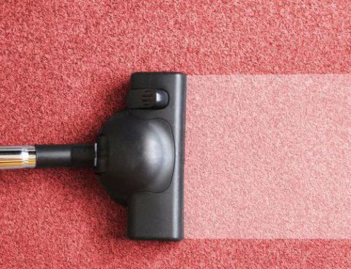Consejos Del Hogar: ¿Cómo mantener limpia la moqueta?