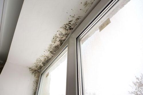 Tipos de humedades en paredes